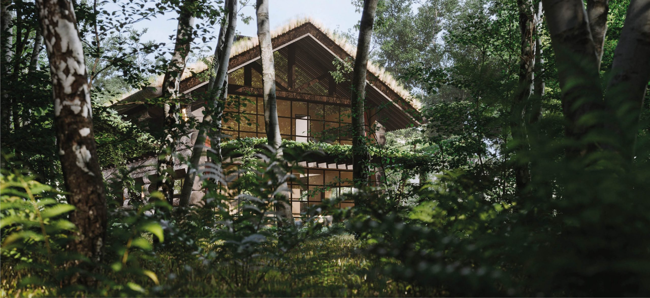 The Jungle Hut 2