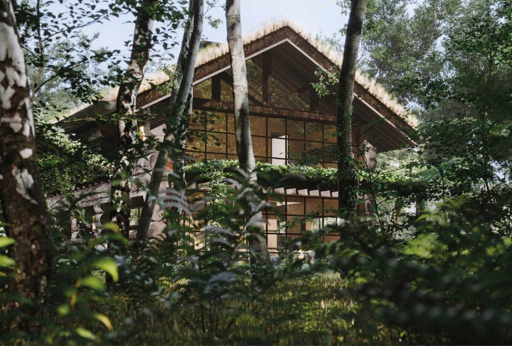 Projekt-Jungle-Hut